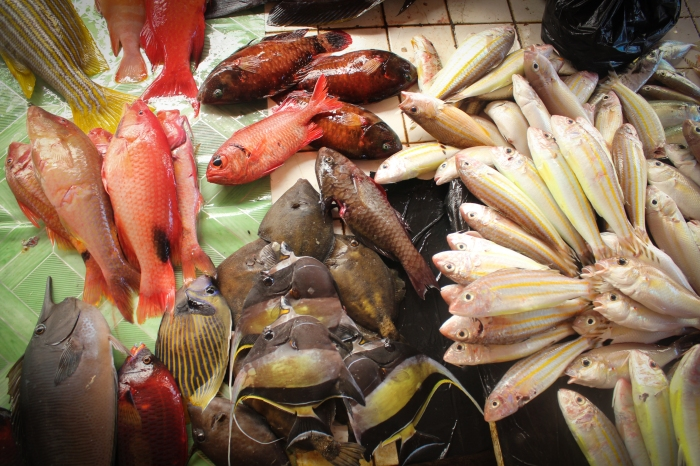 Fresh catch at Bongao's wet market