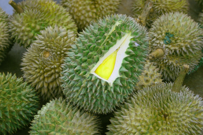 Durians and SoutheastAsians